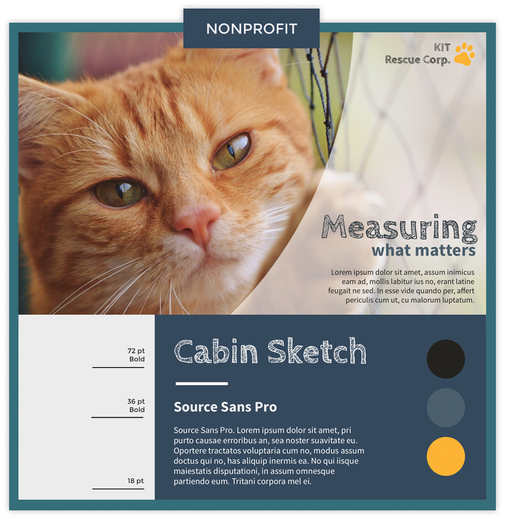 Nonprofit infographic with picture of a cat using fonts Cabin Sketch and Source Sans Pro.