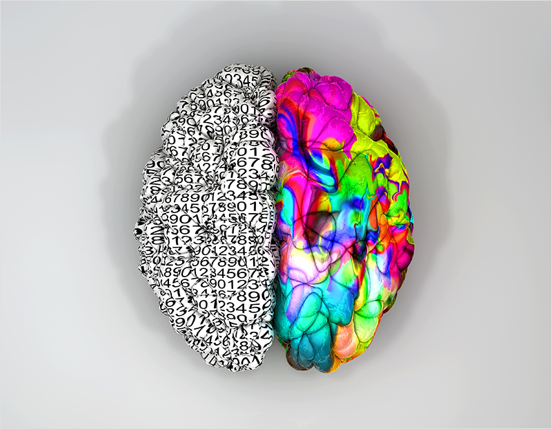 Left-And-Right-Brain-Concept