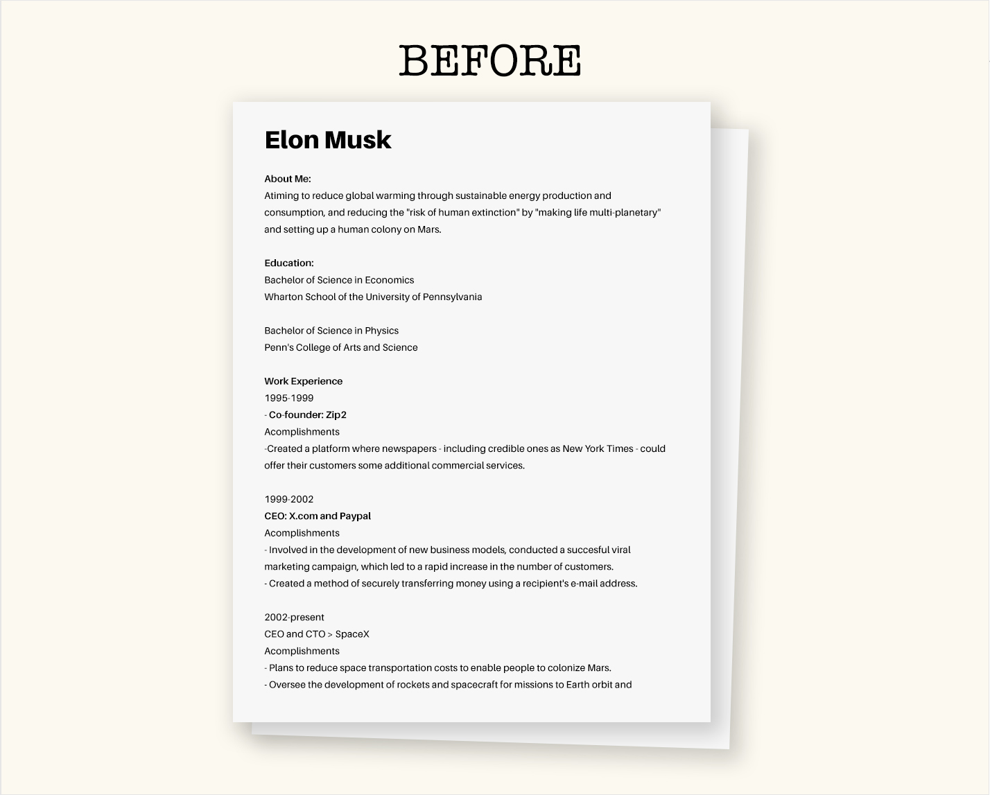 elon musk resume before