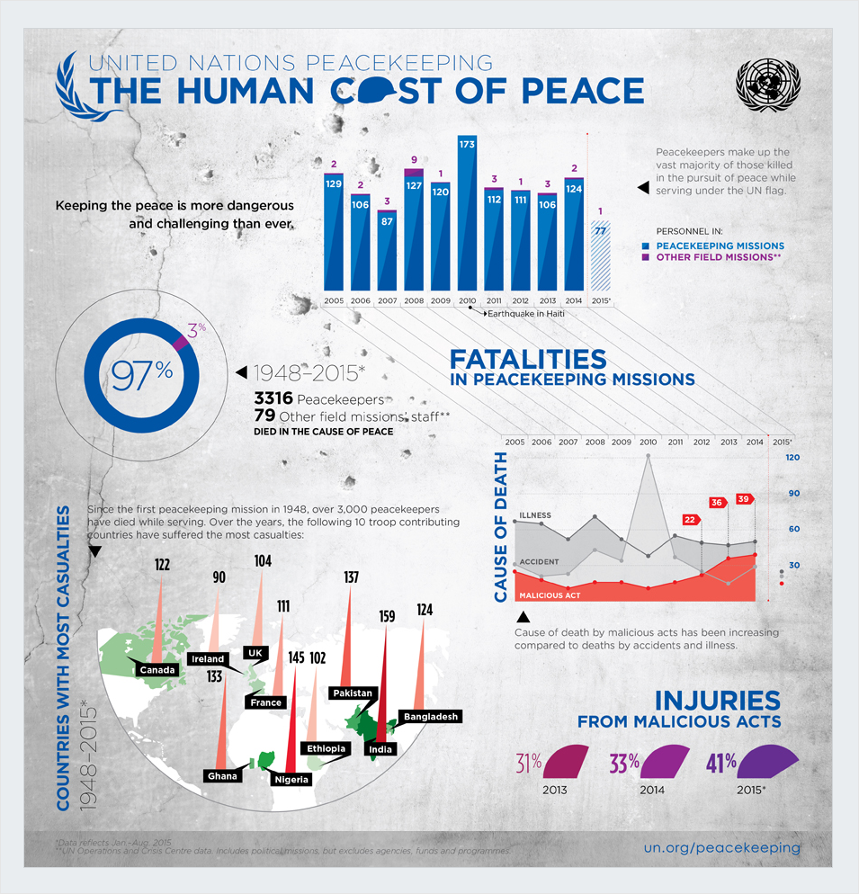 united-nations nonprofit infographics