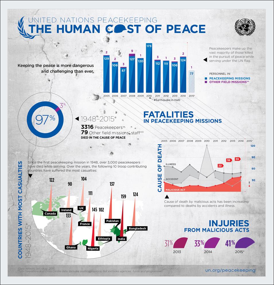 united-nations nonprofit infographics