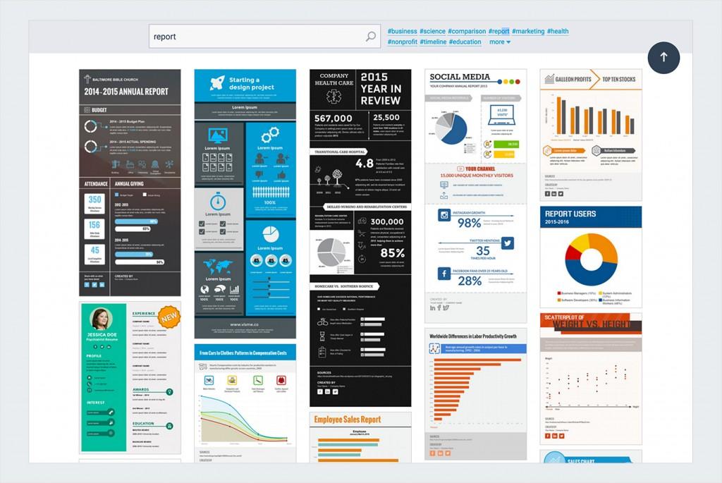 nonprofit infographics visme