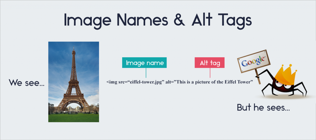 Tags-and-Keywords traits shared by viral infographics