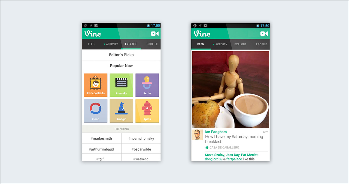 Vine 10 Niche Social Networks Perfect for Sharing Visual Content