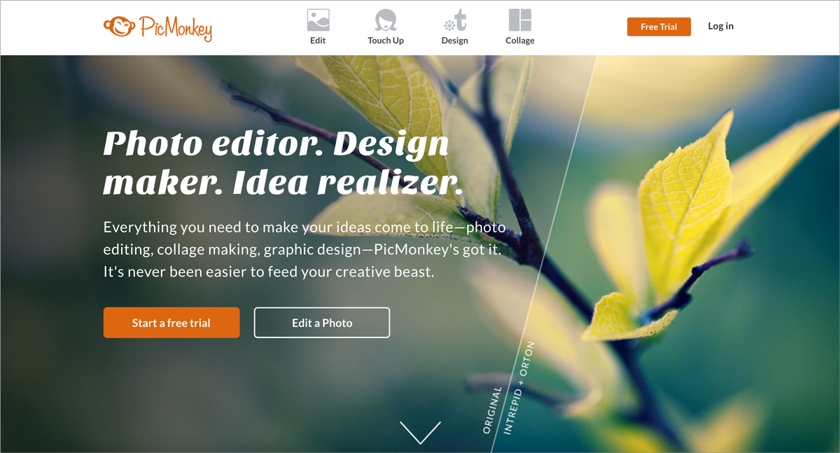 free design resources Photo-and-Video-Editing-PicMonkey