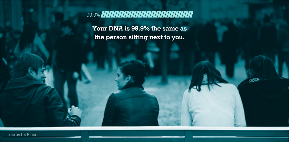 visual statistics Your DNA is 99.9% the same as the person sitting next to you