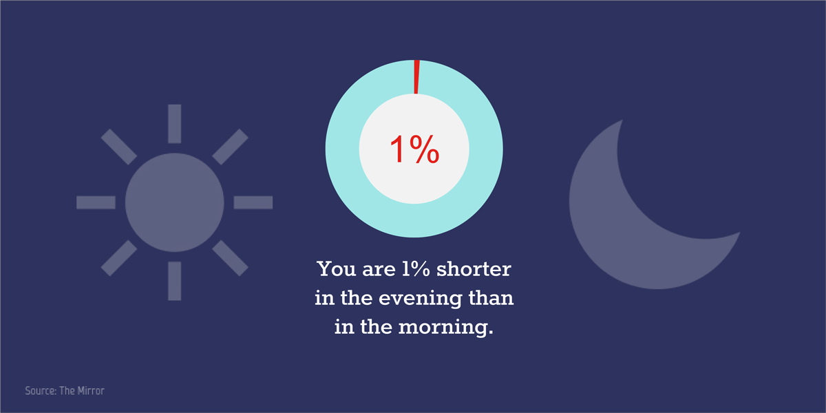 visual statistics You are 1% shorter in the evening than in the morning