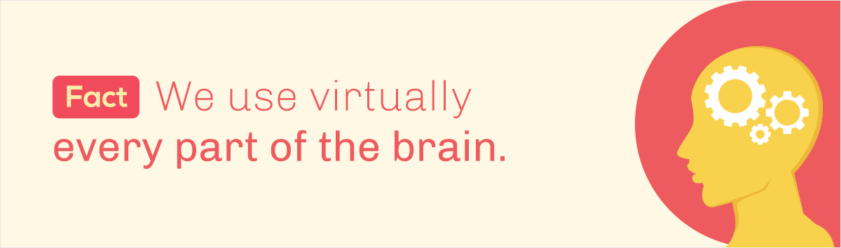 debunked 10 common myths about our visual brain fact we use virtually part of the brain