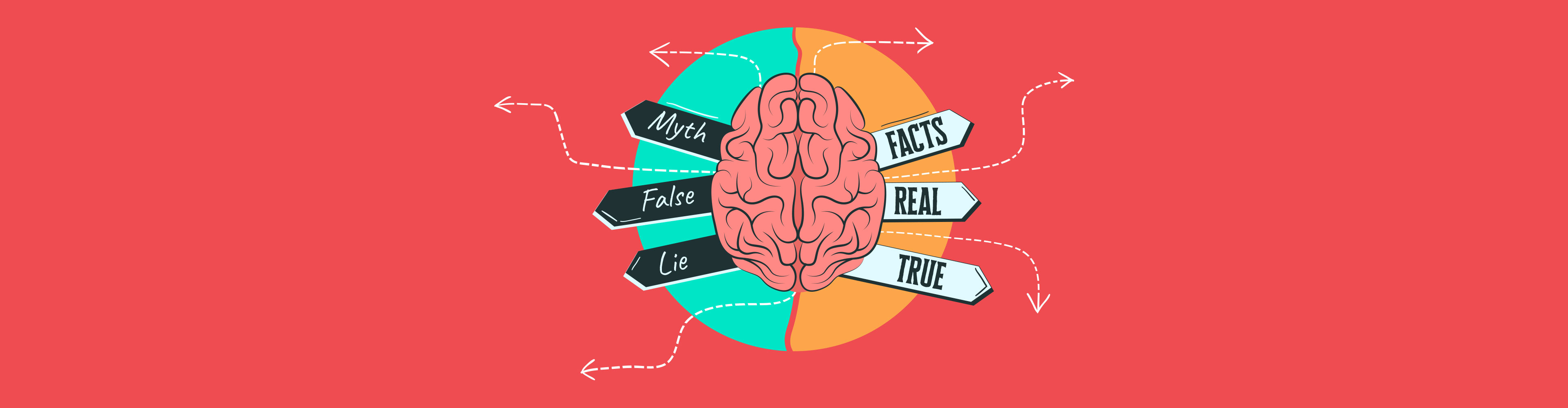 common myths visual brains debunked - header wide