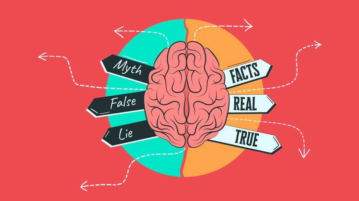 common myths visual brains debunked - header