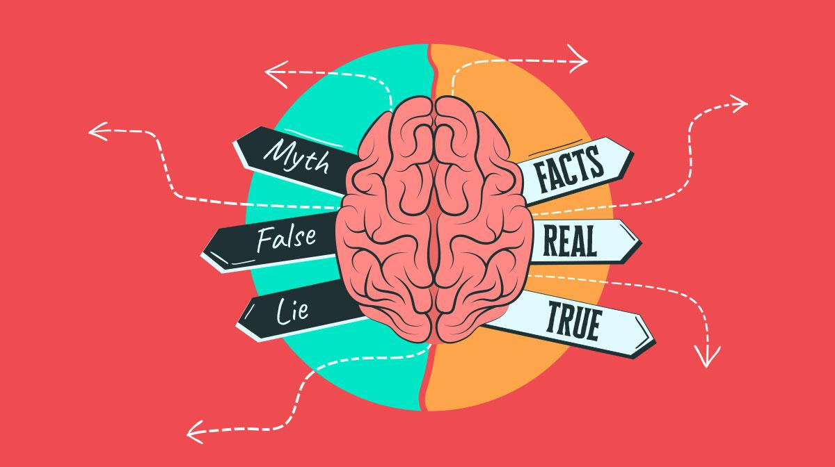common myths visual brains debunked - header