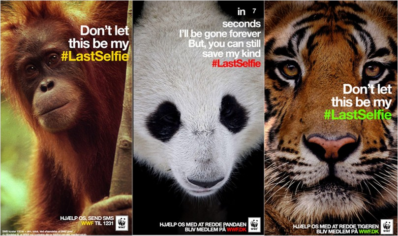 17 Creative Visual Marketing Campaigns by Nonprofits-Denmark-WWF