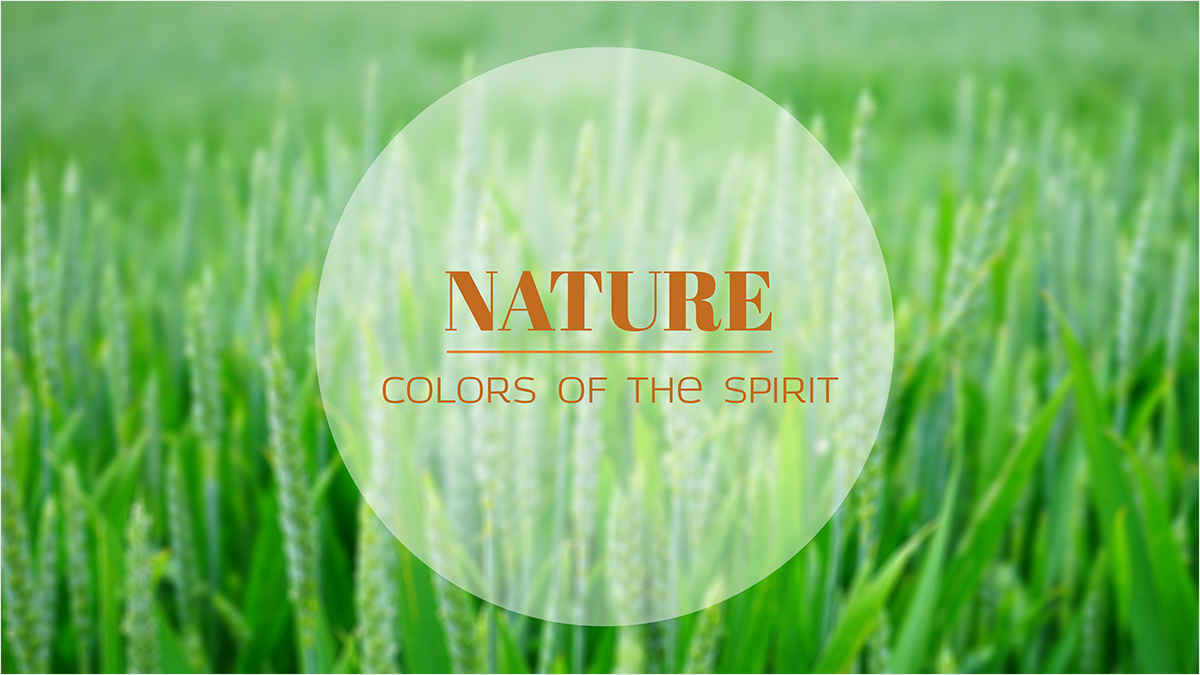 Nature-youtube-banner-template-channel-art-grass-green-color-summer-season-natural