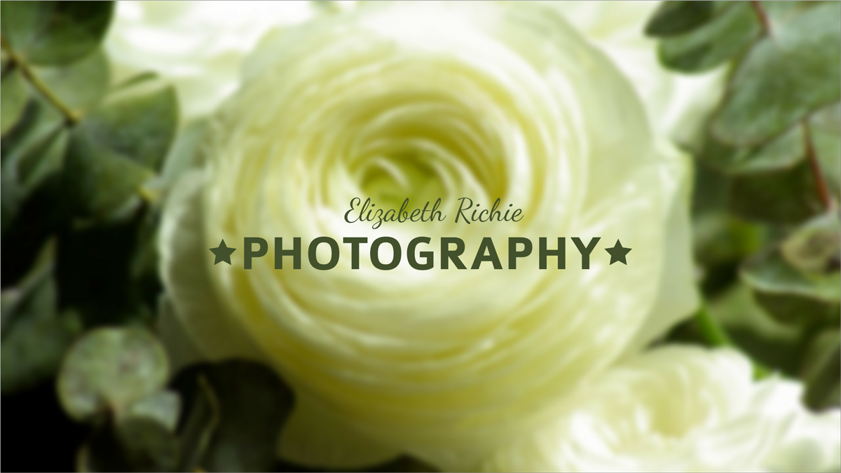 Photo-Studio-youtube-banner-template-channel-art-camera-photography-picture-rose-yellow-flower
