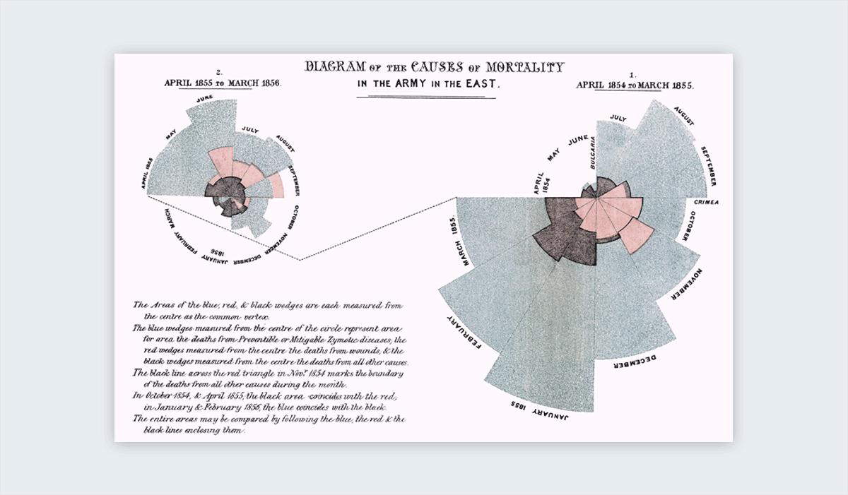 interesting infographics Florence Nightingale's War Mortality, 1859