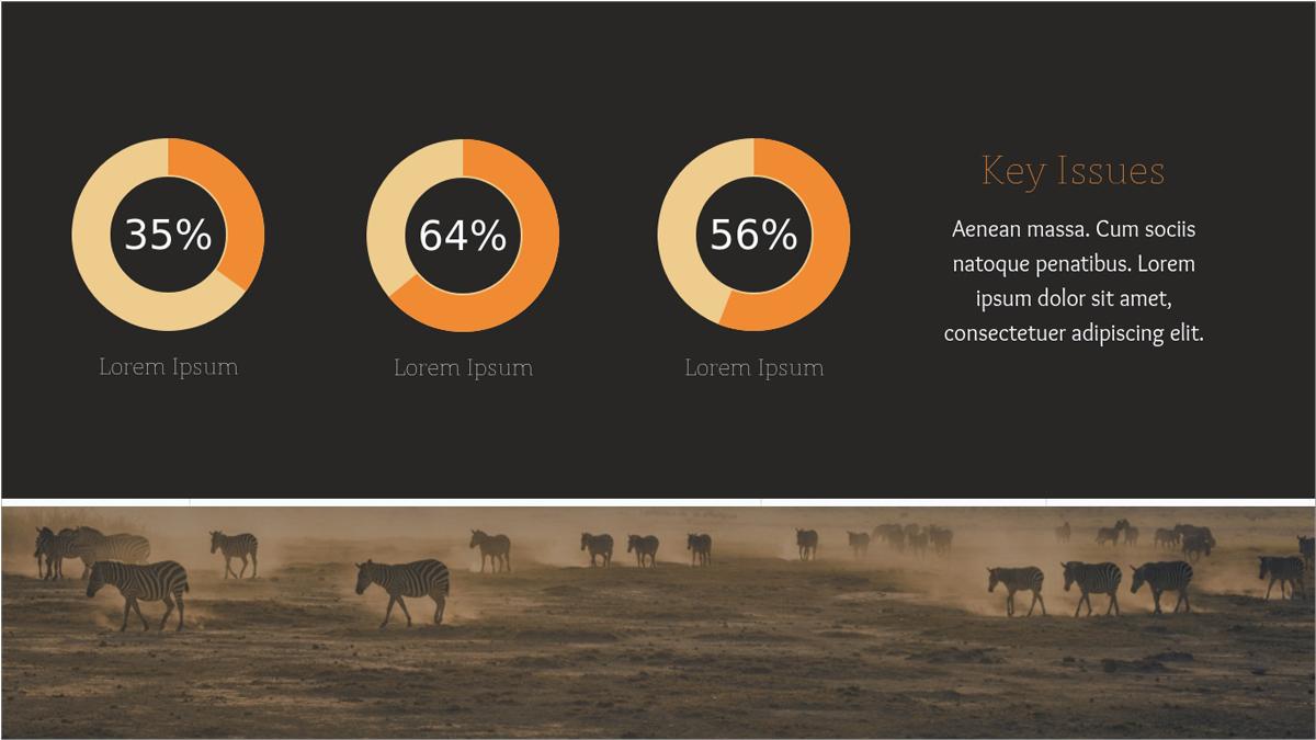Nonprofit-Animals-Presentation-Templates-Key-Issues presentation theme