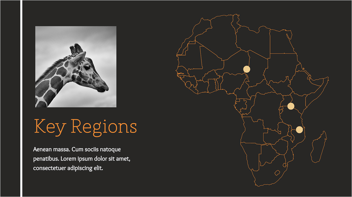 Nonprofit-Animals-Presentation-Templates-Key-Regions presentation theme