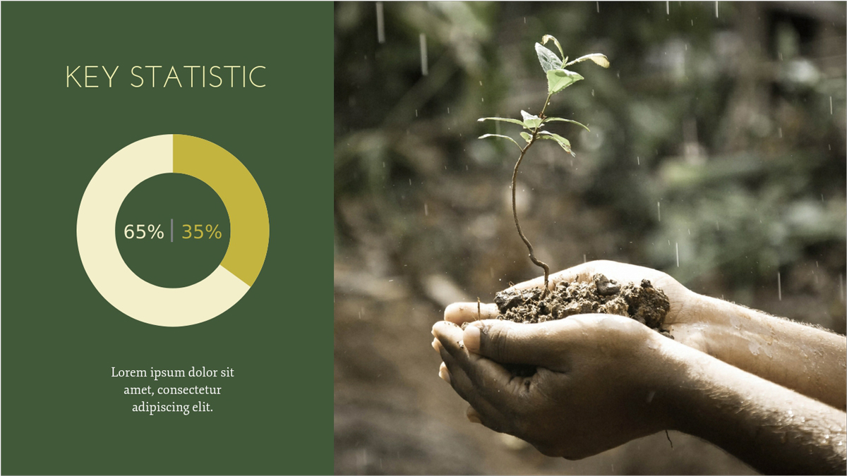 Nonprofit-Environmental-Presentation-Template-Key-Statistics presentation theme