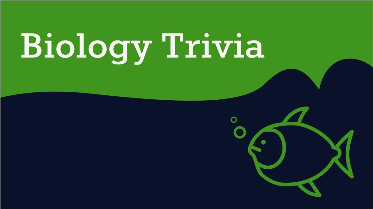 Trivia-Quiz-Presentation-Template-Biology-Trivia presentation theme