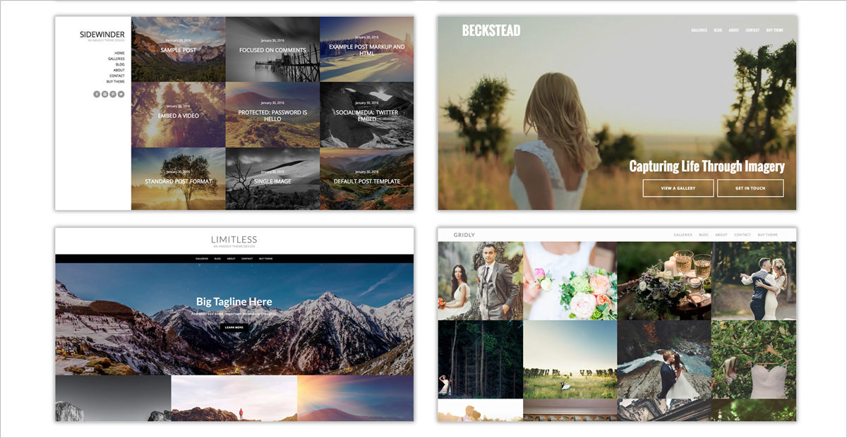 Gallery-plugins-NextGen-Gallery