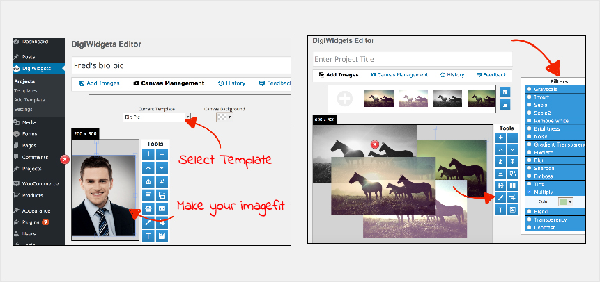 Image-Editing-Plugins-DigiWidgets-Plugin