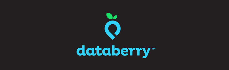 creative logo designs to inspire you logo samples data berry