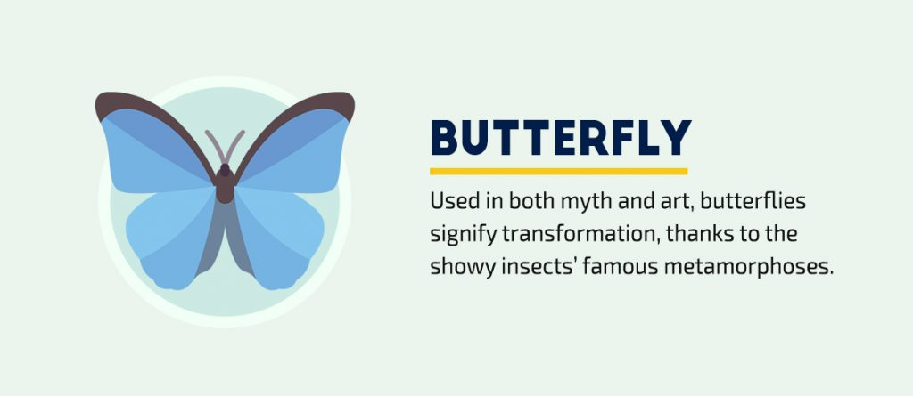 visual symbols and meanings every communicator visual storyteller needs to know butterfly