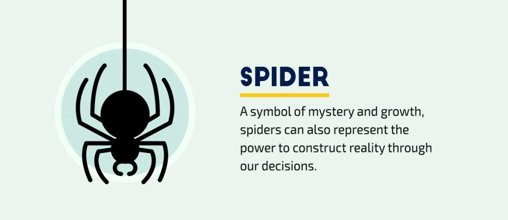 40-Visual-Symbols-Every-Communicator-Needs-to-Know-Spider