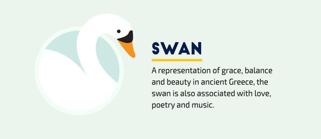 40-Visual-Symbols-Every-Communicator-Needs-to-Know-Swan