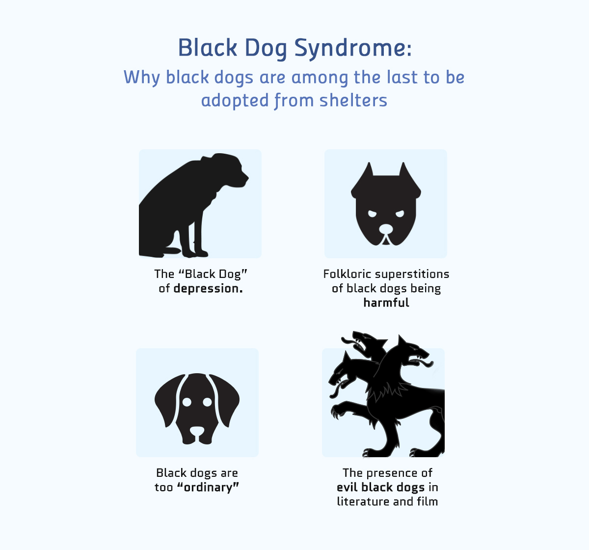 black dog syndrome color meanings Real-life Examples of How Color Affects Our Perceptions of Reality