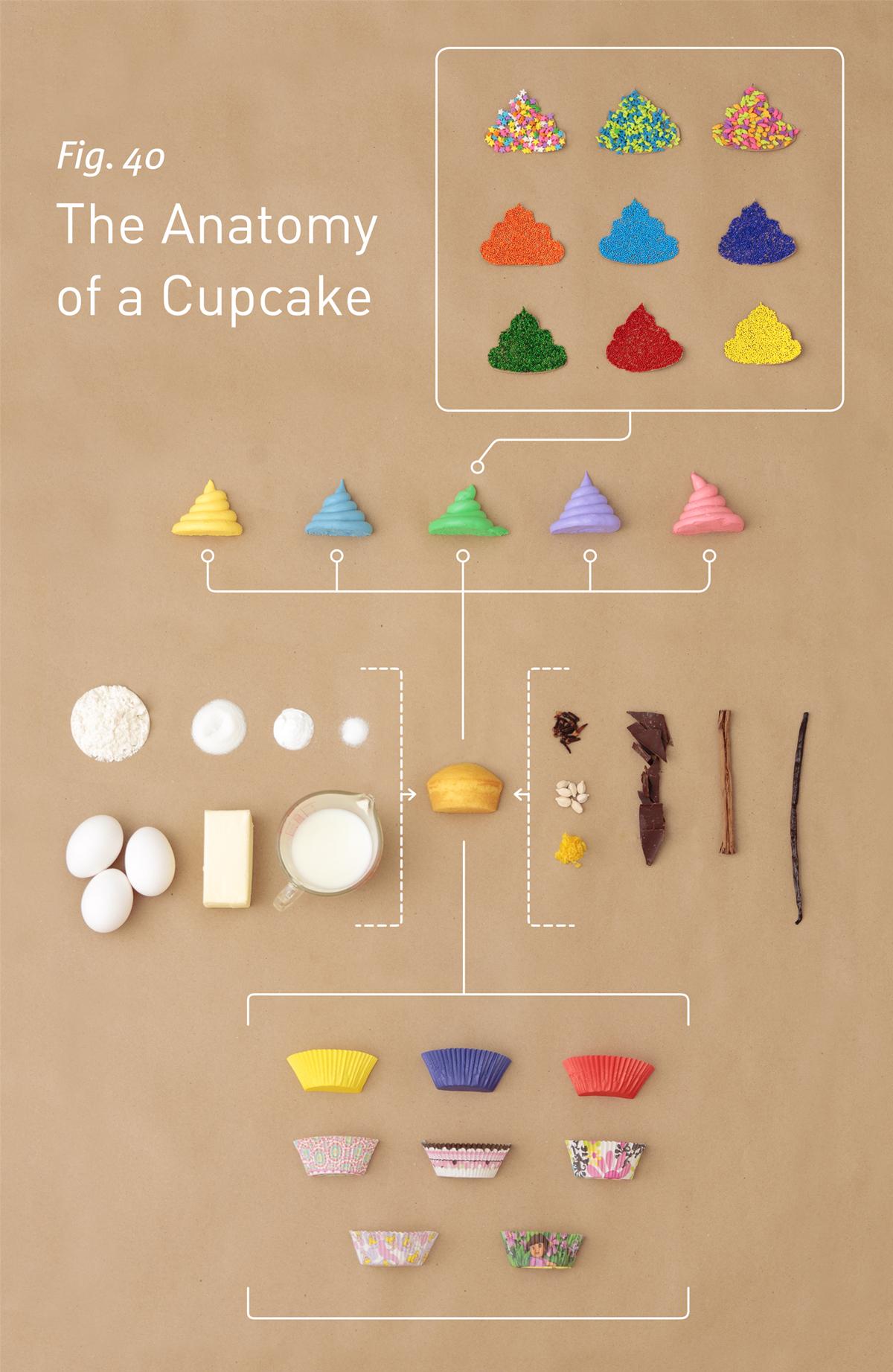 10 + -Ejemplos-de-diseño-minimalista-para-inspirar-sus-propias-creaciones-ejemplos-de-infografía-minimalista-anatomía-de-un-cupcake