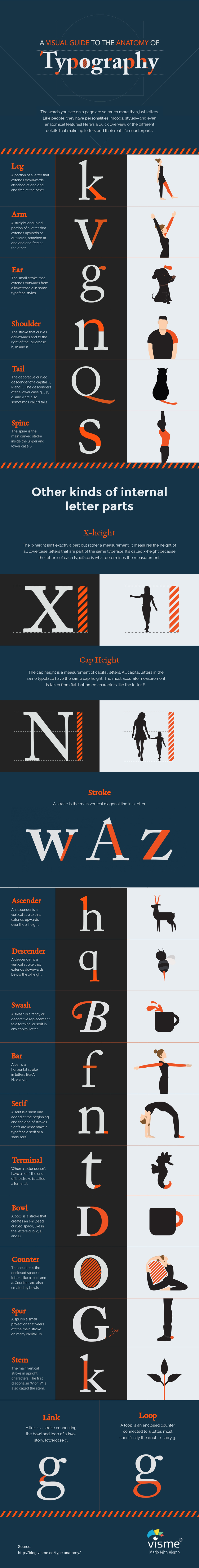 Type Anatomy A Visual Guide To The Parts Of Letters Visual