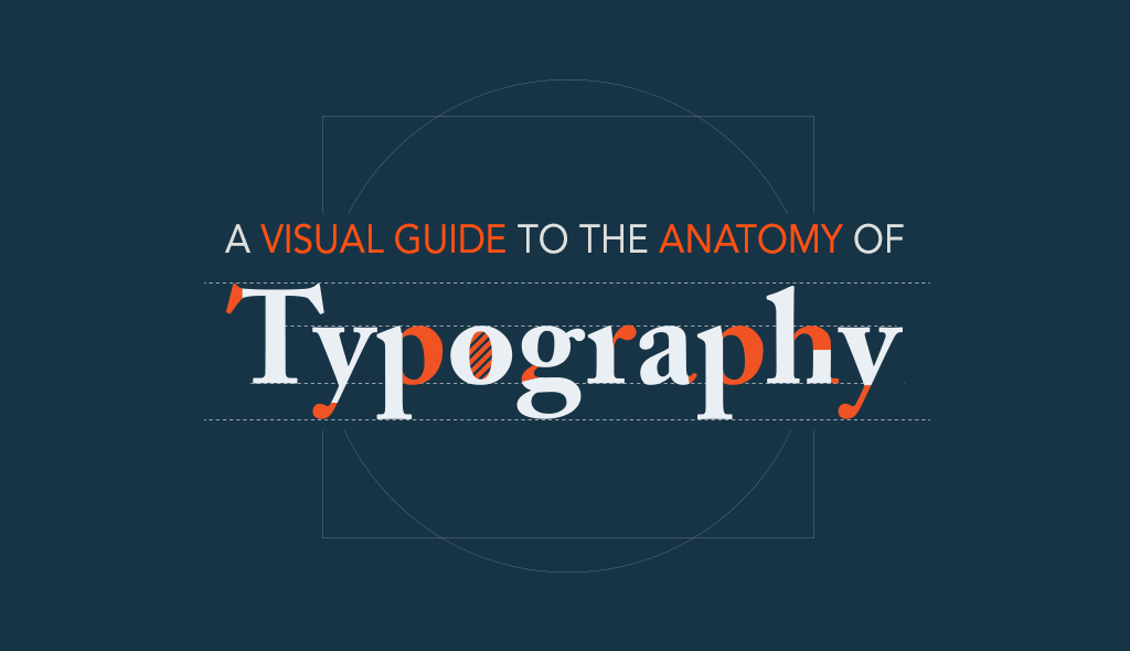 type anatomy A-Visual-Guide-to-the-Anatomy-of-Typography