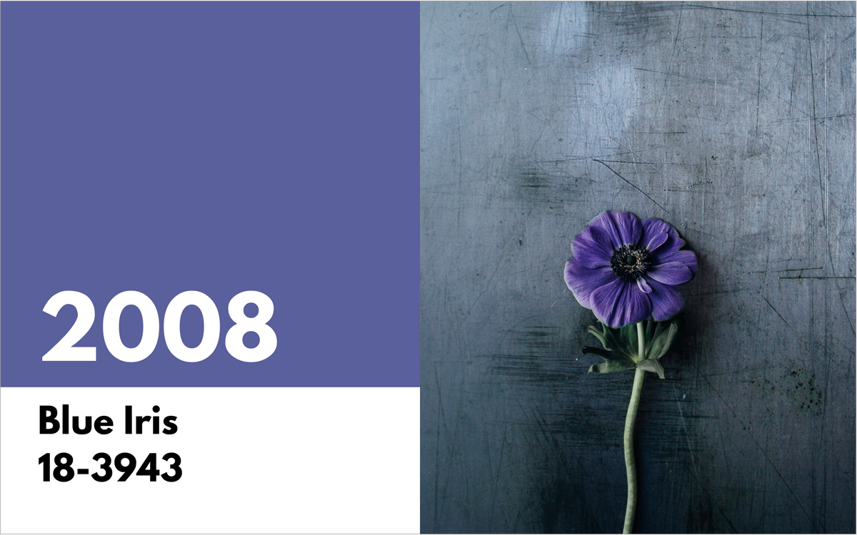 pantone color of the year 2008 blue iris