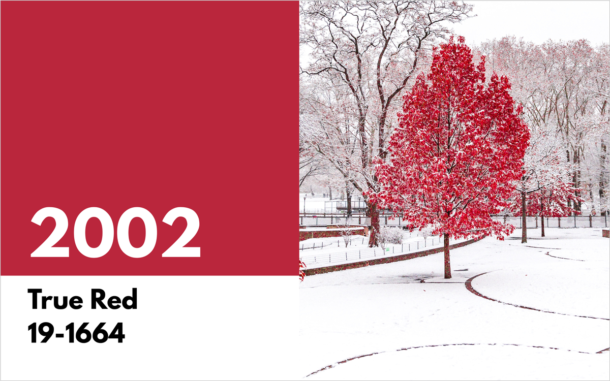 pantone color of the year 2002 true red