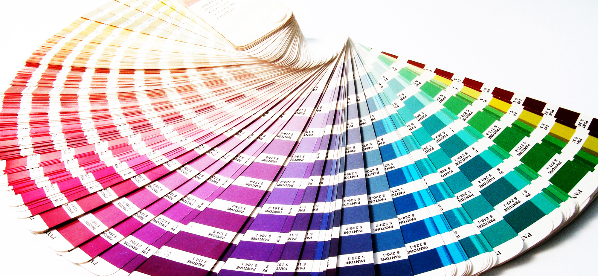 color swatches pantone color of the year