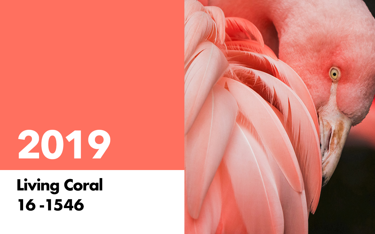 2019-Living-Coral pantone color of the year 2019