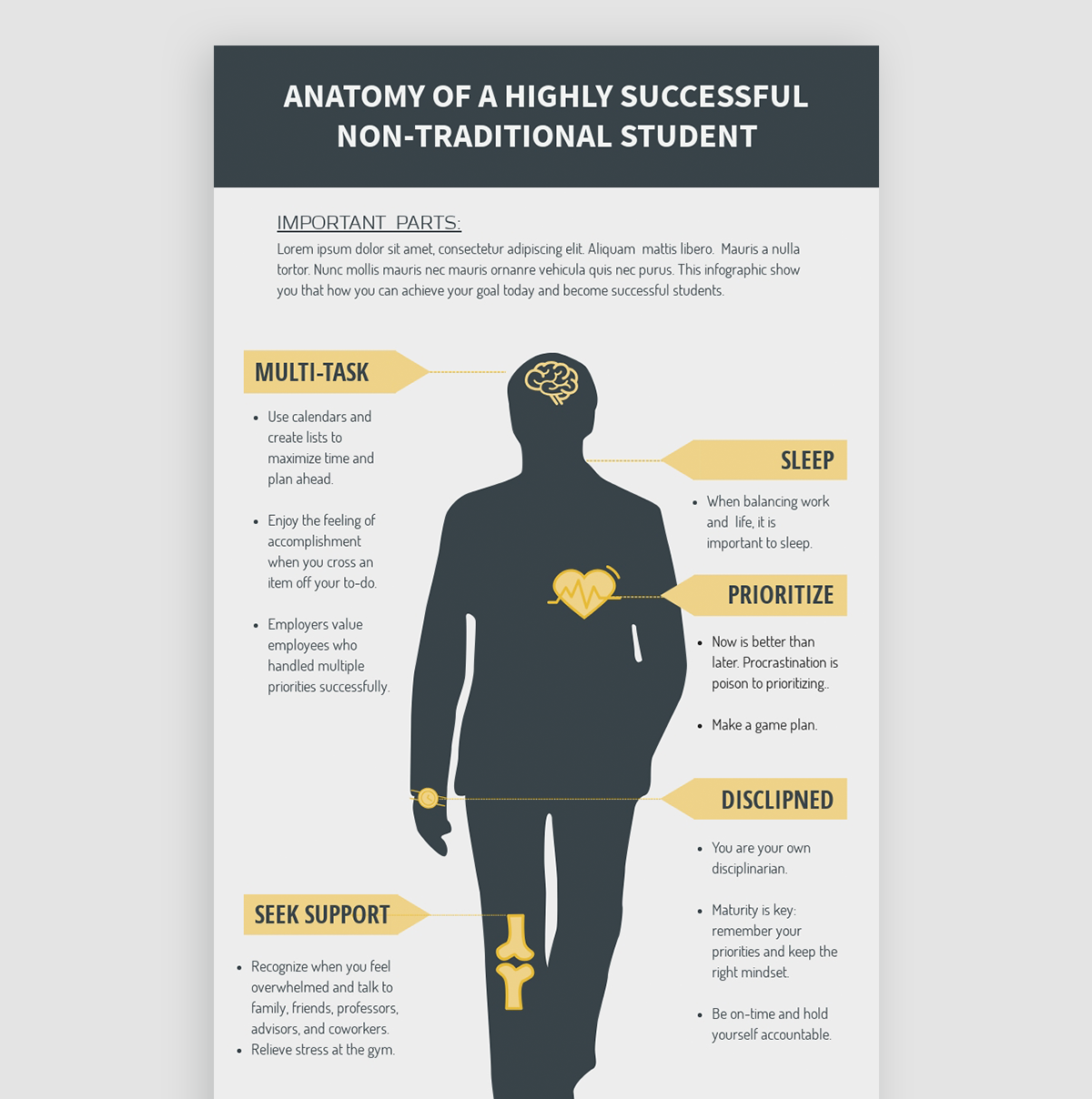 how to design infographics - choose the right format anatomical template visme