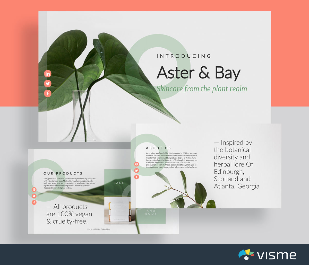 presentation slides - company overview template visme