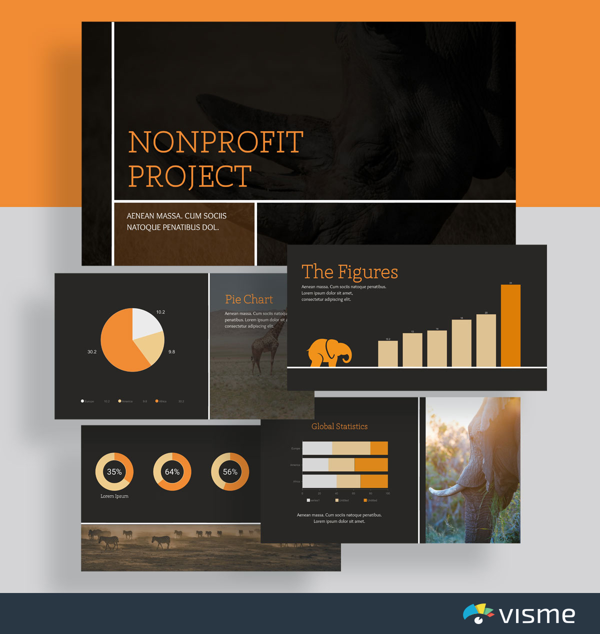 presentation slides - nonprofit animals template visme