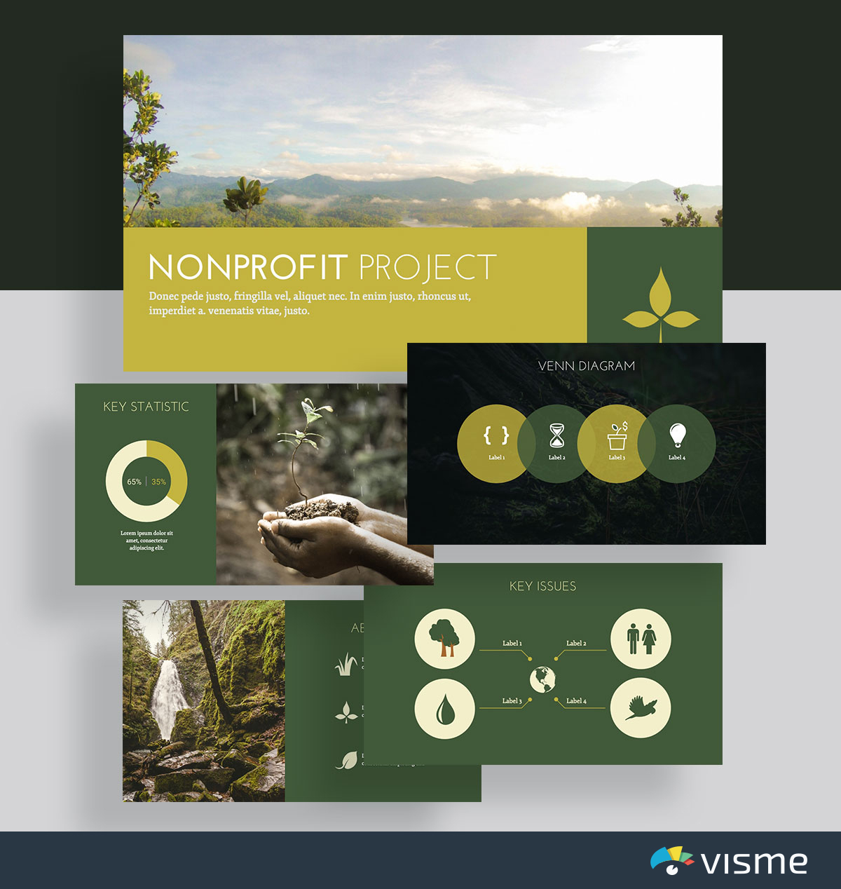 presentation slides - nonprofit environmental template visme