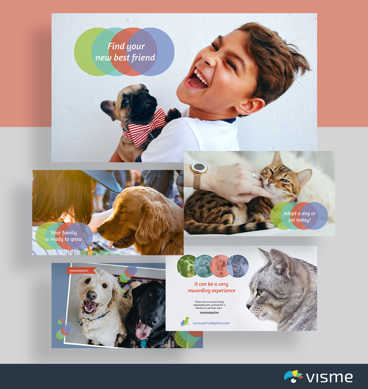presentation slides - pet adoption slideshow template visme