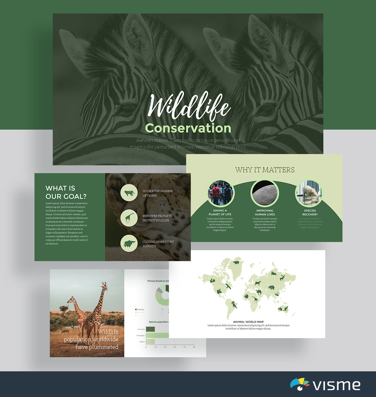 presentation slides - wildlife conservation template visme