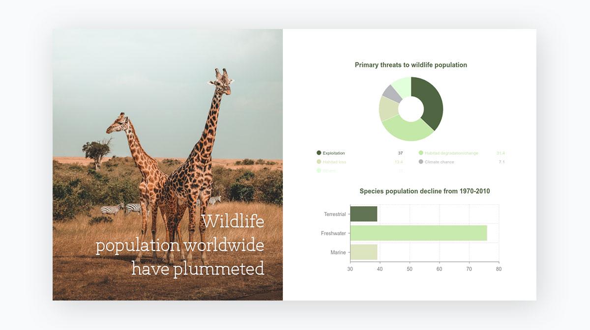 presentation tips - Stick-to-one-image-per-slide
