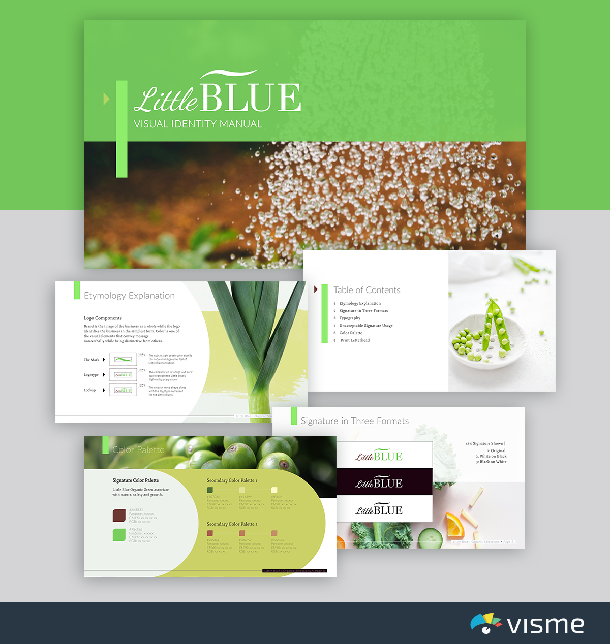 best presentation templates - littlebluebrand guidelines visme