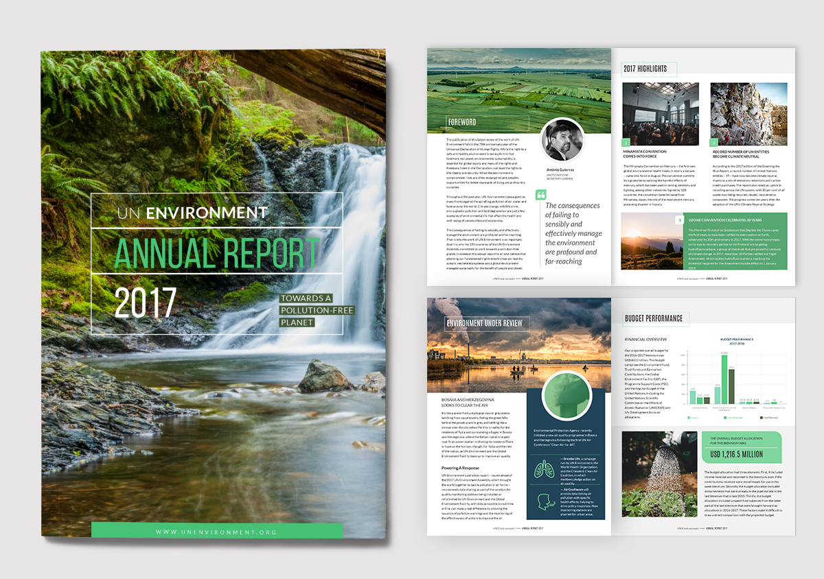 report examples - annual report template