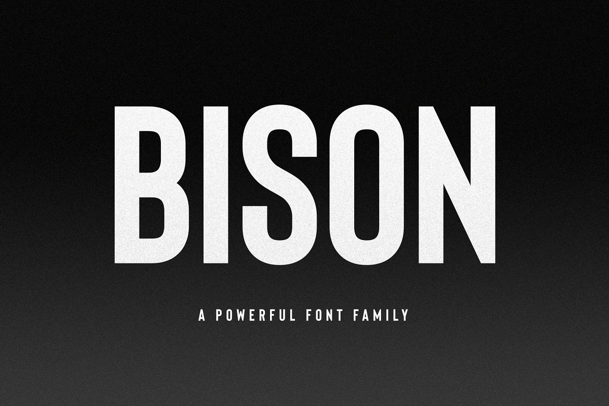 top fonts 2020 - bison