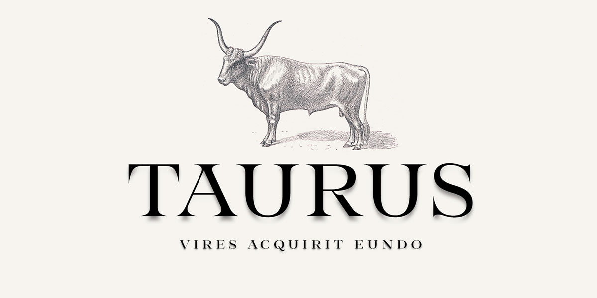 top fonts 2020 - taurus