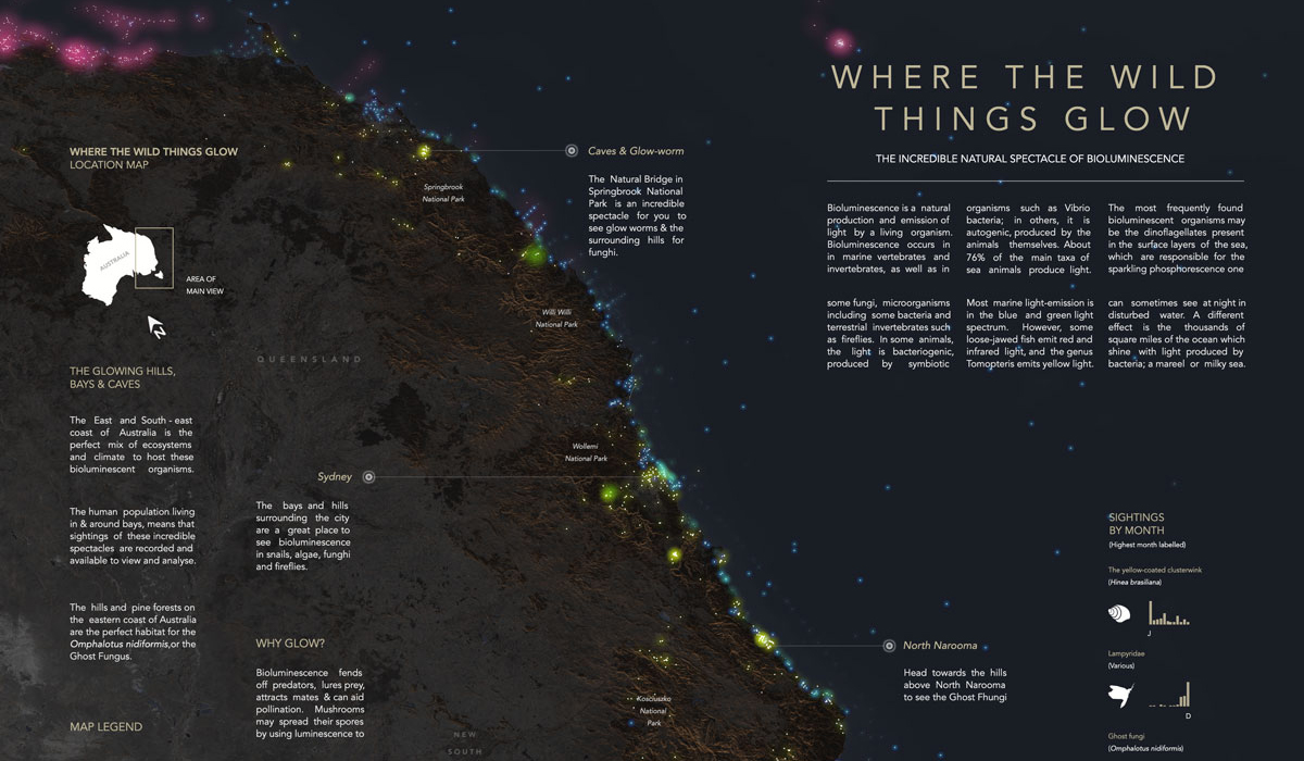 best-data-visualizations-2019-2-Where-the-Wild-Things-Glow