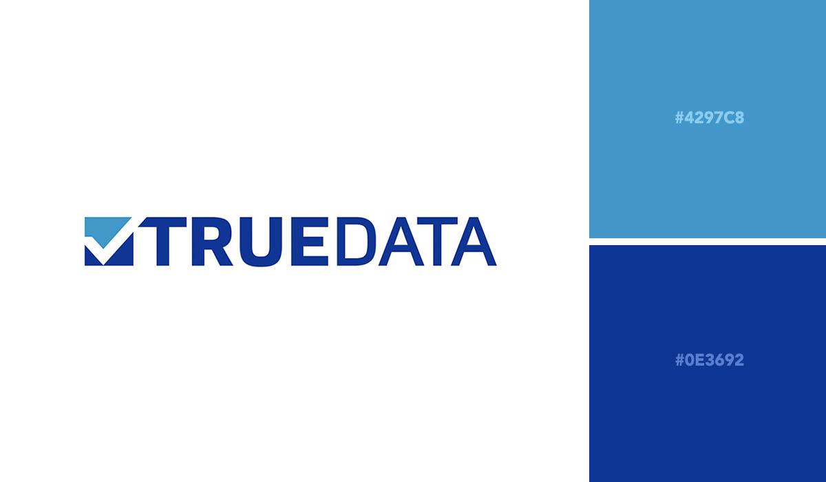 logo color schemes - true data palette